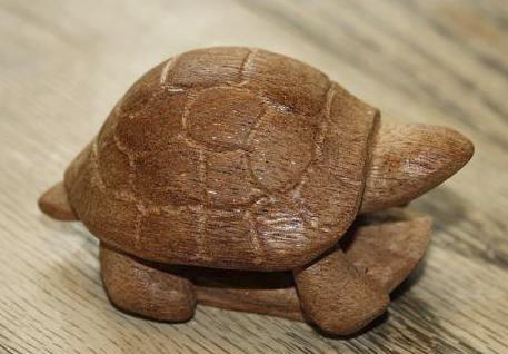 B7 Sea Turtle